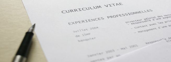 CV, Curriculum Vitae, experience professionnelle *** local caption *** Job search illustration. Resume, experience, curriculum vitae